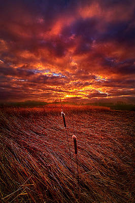 Hope Photograph - I Know That We Can Make It, You And Me by Phil Koch