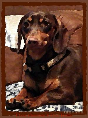 Doxies Digital Art - I Love Chocolate N Doxies Poster by Bobbee Rickard