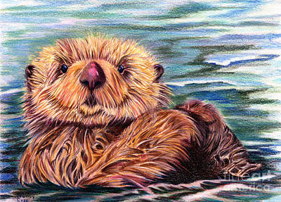 Otter Drawing - I Otter Be In Pictures by Nancy Cupp