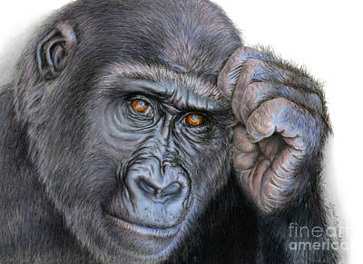 Ape Drawing - I Think Therefore I Am by Sarah Batalka