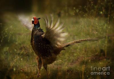 Pheasant Digital Art - I Want To Fly  by Angel  Tarantella