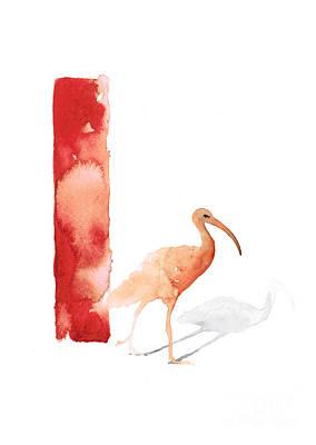 Ibis Mixed Media - Ibis Watercolor Alphabet Art Print by Joanna Szmerdt