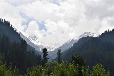 Tree Photograph - Ice Caps by Sumit Mehndiratta