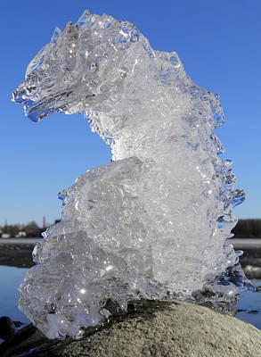 Crystals Photograph - Ice Dragon by Sami Tiainen