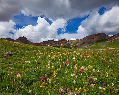Ice Lake Meadow Print by Darren White