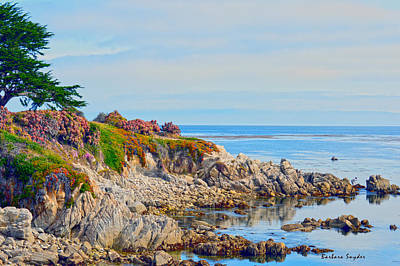 Ice Plant Along The Monterey Shore 3 Print by Barbara Snyder