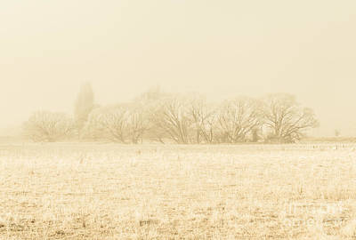 Autumn Scene Photograph - Icy Cold Foggy Woodland by Jorgo Photography - Wall Art Gallery