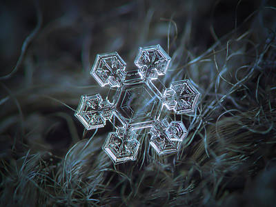 Abstract Photograph - Icy Jewel by Alexey Kljatov