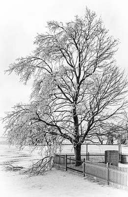 Icy Memories 3 Print by Steve Harrington