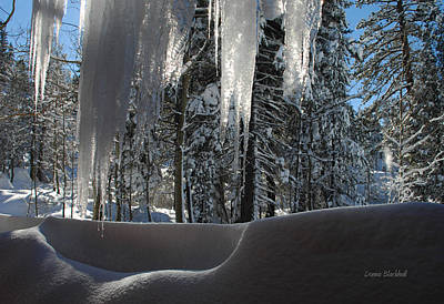Icy Viewpoint Print by Donna Blackhall