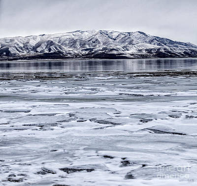 Snow Photograph - Icy Winter by David Millenheft