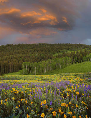 Idaho Spring Print by Leland D Howard