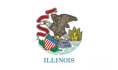 University Of Illinois Painting - Illinois State Flag by American School