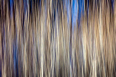 Abstract Movement Photograph - Imbroglio by Todd Klassy