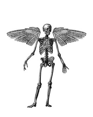 Rock Angels Digital Art - Immortality by Madame Memento