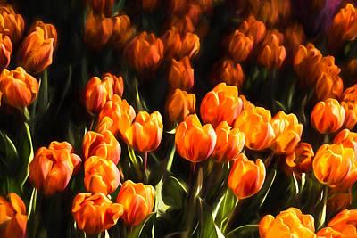 Vivacious Digital Art - Impressions Of Gardens - Flame Colored Tulip Abundance by Georgia Mizuleva