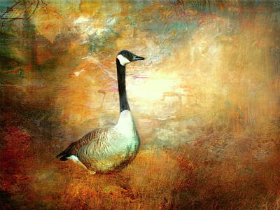 Waterfowl Painting - In A Quiet Place by Bellesouth Studio