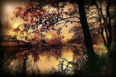Forrest Photograph - In Dreams by Jacky Gerritsen