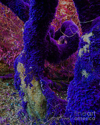Other Worlds Digital Art - In The Dream Time  by JoAnn SkyWatcher