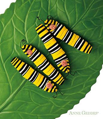 Monarch Photograph - Inch Worms by Anne Geddes