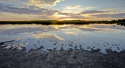 Incoming Tide Photograph - Incoming Tide Sunrise Reflection by Dustin K Ryan