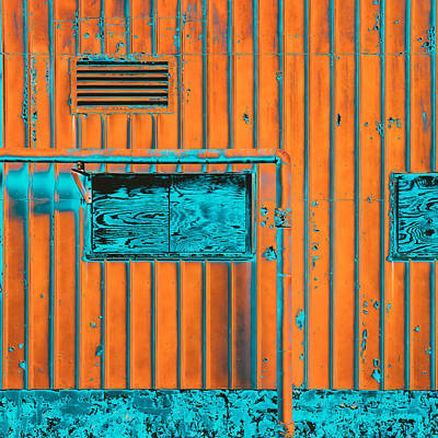 Window Photograph - Incredulous by Lee Harland