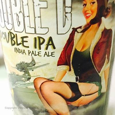 Airplane Photograph - India Pale Ale   by Steven  Digman