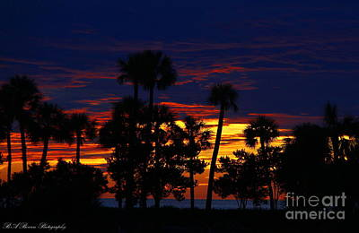 Indigo Sunset Print by Barbara Bowen