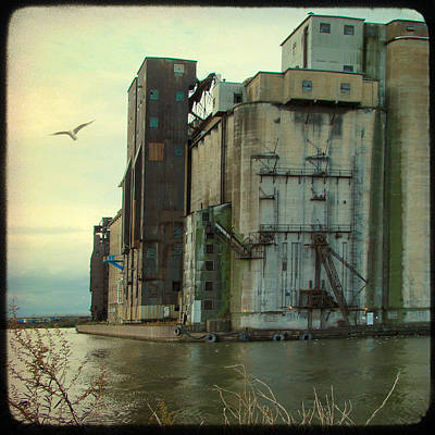 Industrial Water Shared With Seagull Print by Gothicolors Donna Snyder