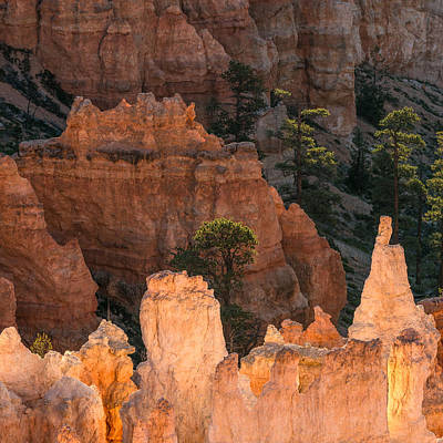 Bryce Canyon National Park Photograph - Inner Reflections by Joseph Smith