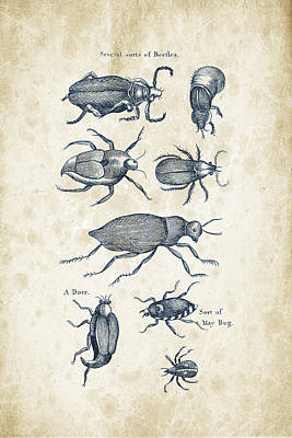 Insects Digital Art - Insects - 1792 - 02 by Aged Pixel