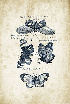 Insects - 1792 - 13 Print by Aged Pixel