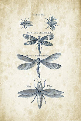 Insects - 1792 - 16 Print by Aged Pixel