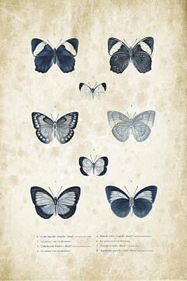 Insects - 1832 - 02 Print by Aged Pixel