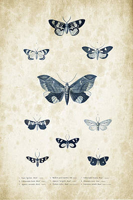 Insects - 1832 - 05 Print by Aged Pixel