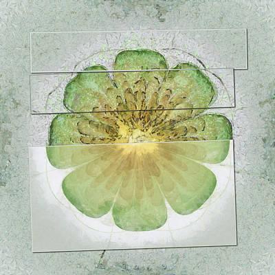 Intermeningeal Agreement Flowers  Id 16164-053239-04261 Print by S Lurk