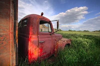 Paint Photograph - International In The Tall Grass by Dan Jurak