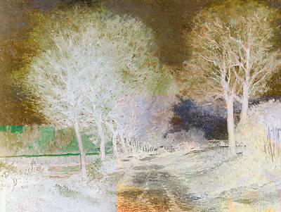 Inv Blend 4 Sisley Print by David Bridburg