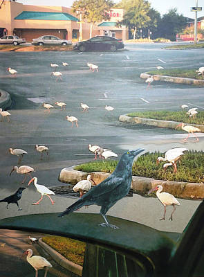 Ibis Mixed Media - Invasion Of The White Ibis by Joan Mansson