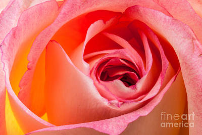 Photograph - Invitation by Greg Summers