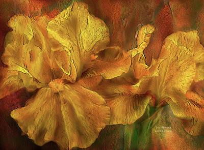 Irises Mixed Media - Iris Abstract by Carol Cavalaris