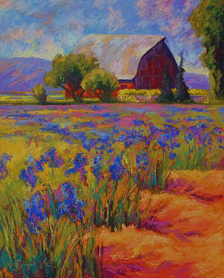 Vineyard Painting - Iris Field by Marion Rose