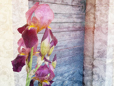 Iris In A Doorway Print by Antique Images