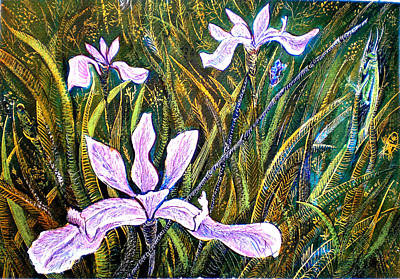 Grasshopper Drawing - Irises And Grasshopper by Ion vincent DAnu