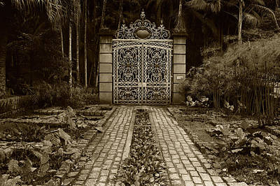 Iron Gate Print by Amarildo Correa