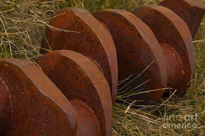 Photograph - Iron Vertibrae by Jennifer Apffel