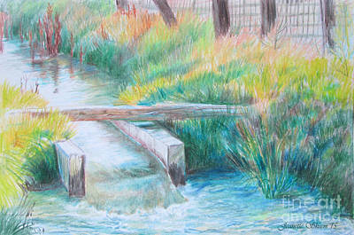 Dry Lake Drawing - Irrigation Ditch by Jeanette Skeem