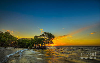 Island Paradise Print by Marvin Spates