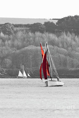 Isolated Yacht Carrick Roads Print by Terri Waters