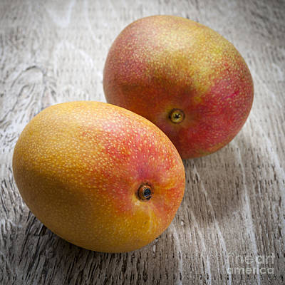 Mango Photograph - It Takes Two To Mango by Elena Elisseeva